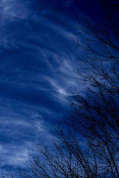 """""""Les branches dénudées par l'hiver, le vent , le froid,  ne sont plus amicales et griffent le bleu du ciel""""  .  sky by Lexandeer"""