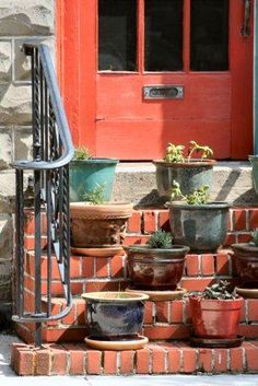 Top five best tips about growing herbs in pots.