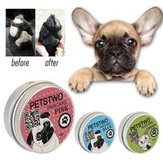 """""""Silky Paws"""" balm by Frenchie World – Frenchie World Shop Blue Brindle French Bulldog, French Bulldog Breed, Bulldog Breeds, French Bulldogs, Blue Frenchie, Most Beautiful Dogs, Pet Paws, Dog Life, Your Pet"""