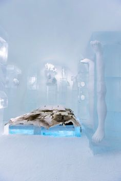 ICEHOTEL is the world's first and largest hotel built of snow and ice and it is situated in Jukkasjärvi, a small village in Northern Sweden with 1,100 residents and 1,000 dogs. Each winter, some 50,000 visitors from all over the world...