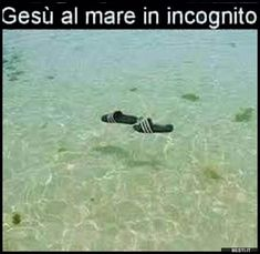 Gesù al mare | BESTI.it - immagini divertenti, foto, barzellette, video