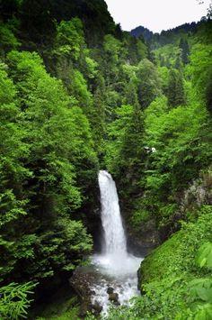 Palovit Şelalesi - Picture of Sendagez, Rize - Tripadvisor Black Sea, Homeland, Waterfalls, Serenity, Trip Advisor, Istanbul, Coast, Photo And Video, Nature