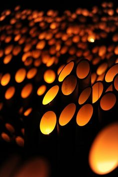 Bamboo Lights at the Kyoto Light Festival