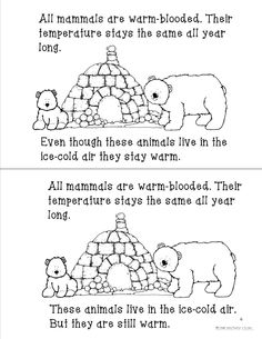 This is the perfect time of year to teach mammals of the woods! Hibernation and migration fluency passages are included in this unit as well as fluency passages for 5 mammals. All passages are differentiated as well.  You get 5 Art projects, and 5 tests too!!! Lots of fun Science and Languages arts projects drive the learning home! See it in action on my blog! may your heart and grade book be full!