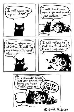 Kitty Baby - image