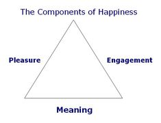 Martin Seligman's components of happiness - I have to remember this pinner! She has pins for everything psych!