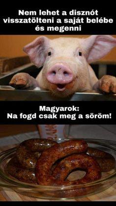 Minion Humor, Bad Memes, Hurt Feelings, Me Too Meme, Funny Pins, Funny Moments, Hungary, Puns, Sarcasm