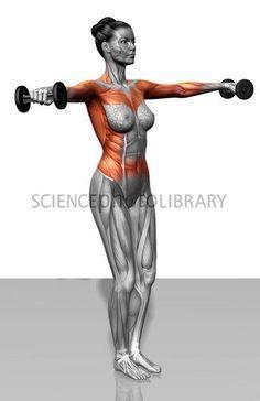Lat Raises do shoulders GOOD. Love defined arms!!!