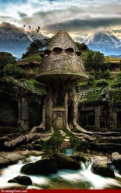 Tree House amazing