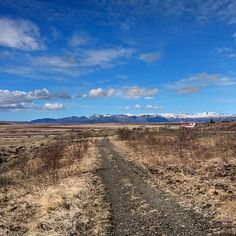 Visiting Iceland means constantly pulling over to take photos of this amazing land! #wanderlust #solotravel #travel #travelling #travelbloggers #travelblog #roadtrip #hirecar #Iceland #mountains #scenery