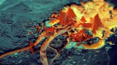 Dvein // Science Channel 'Erosion' Director's Cut on Vimeo