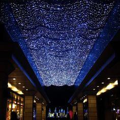 Illumination everyday! Love daikanyama. いついってもイルミネーションが観れるこの代官山奥のSeriaに行くだけなのに豪華な気分にしてくれるのです(笑) #daikanyama #tokyo #local #japan #winter #love #happy #東京 #代官山 #毎日 #いつも #イルミネーション #キラキラ #天の川 みたい