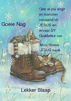 Evening Greetings, Good Night Greetings, Good Night Wishes, Good Night Quotes, Day Wishes, Blessed Night, Afrikaanse Quotes, Good Night Blessings, Goeie Nag