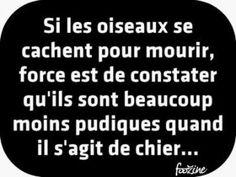 Gif Panneau 2014 (243)