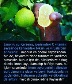 Faydalı Bilgiler Green Tea Tablets, Good To Know, Did You Know, Green Tea Supplements, Alzheimer, Interesting Information, Meaningful Quotes, Funny Moments, Natural Health