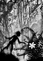 Flower of the Fern A silhouette illustration to accompany the Polish legend of the flower of the fern by Jan Pienkowski. Fern Flower, Flowers, Fairy Silhouette, Vintage Silhouette, Shadow Images, Shadow Puppets, Midsummer Nights Dream, Graphic Design Illustration, Artist Art