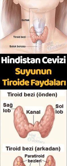 Hindistan Cevizi Suyunun Tiroide Faydaları If you have thyroid, you are probably experiencing these symptoms Leiden, Coconut Water Benefits, Hypothyroidism, Health Care, Health Fitness, Dua, Watches, Healthy, Hiccup