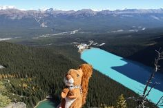 https://flic.kr/p/z2yHcW   Lake Louise   Lake Louise, view from the Big Beehive. #mascot #mascotte #travelingmascot #travellingmascot #DexterLEcureuil #DexterTheSquirrel #peluche #stuffedanimal