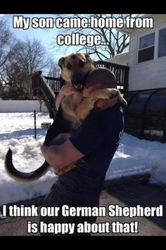 Now normally I would say this dog is waaaay too big to be climbing on people, but this pic is too cute.