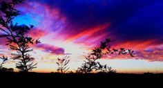 AZ Sunset Veterans Day near Florence  by Michael Baca