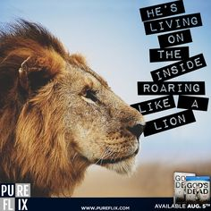Encouragement - He's living on the inside roaring like a lion - Pure Flix - Christian movies - Christian Quotes - #ChristianQuotes  #Roaring #Lion #Newsboys #GodsNotDead #PureFlix #ChristianMovies  www.PureFlix.com