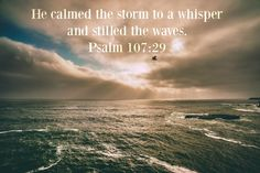 He calmed the storm to a whisper and stilled the waves. Psalm 107:29. Just.Keep. Swimming