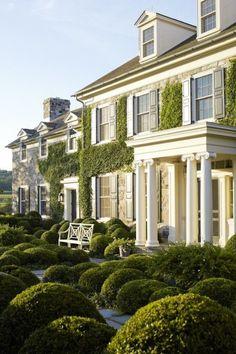 Ivy facade + navy shutters.:
