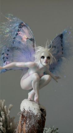 """the-autumn-moon-is-bright: """" Frosty Tinkerbell Winter Faerie OOAK by Nicole West Fantasy Kunst, Fantasy Art, Elfen Fantasy, Art Sculpture, Sculptures, Illustration, Ooak Dolls, Barbie Dolls, Fairy Art"""
