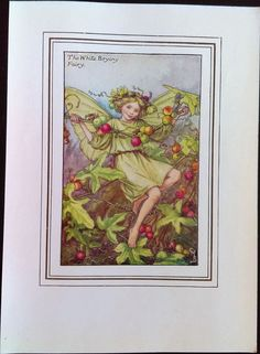 White Bryony Flower Fairy Vintage Print, c.1927 Cicely Mary Barker Book Plate Illustration by TheOldMapShop on Etsy