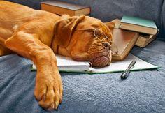 Полезно знать, что при сильной усталости... 0