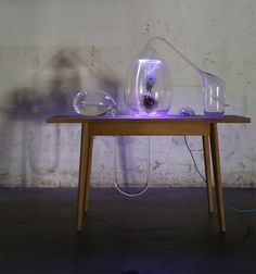 Design Academy Eindhoven Graduate Sarah Daher Has Proposed Harnessing  Airborne Molecules Released By Plants To Enrich