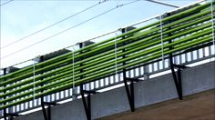 Culture Urbaine - The Cloud Collective - 'An Algae Farm Designed To Suck Up Highway Pollution'