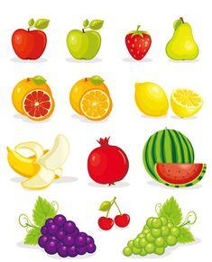 Mas de 40 frutas, verduras y hortalizas vectorizadas | Puerto Pixel | Recursos de Diseño