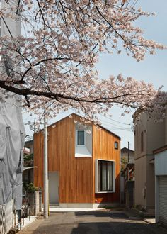 Atelier Kukka's House U stands beside a cherry blossom tree in Tokyo