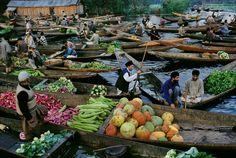 Kashmir. Steve McCurry - Google 検索