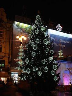 Christmas tree Zagreb