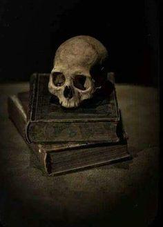 Skulls and Skeletons: Skull on a Stack of Books.