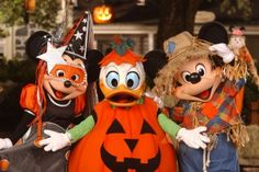 Halloween - Witch Minnie, Pumpkin Donald & Scarecrow Mickey
