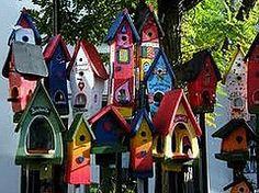 New places for birds ; Bird House Plans, Garden Planters, Herb Garden, Birdhouse Designs, Florida, Front Door Decor, Beautiful Birds, Bird Houses, Bird Feeders