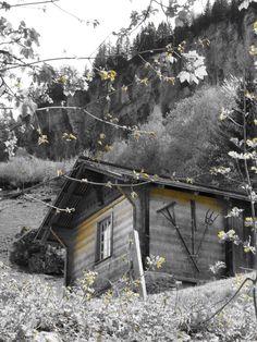Swiss hut. Reichenbach. Switzerland