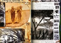 Peter Beard Sketch Books .. seriously beautiful and full of life! What sketchbooks should be