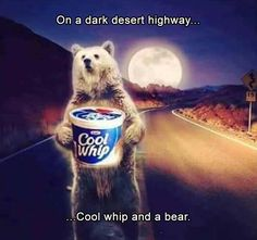 Check out the awesome collection of funny troll picdump 35 in the morning that will make your day. Laugh out loud in the morning by watching these 31 funny pics. Hotel California, Super Funny Pictures, Funny Images, Walmart Pictures, Misheard Lyrics, Funny Troll, Happy Morning, Cool Whip, Tumblr