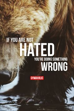 gymaaholic:If you are not hated, you are doing something wrong. http://www.gymaholic.co