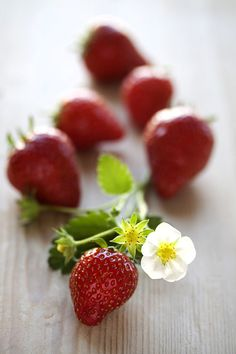 """the first wonderful """"red all the way through"""" Strawberries on the vine!!! yummo!!"""