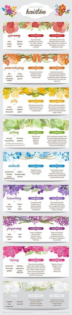 Czy znasz symbolikę kwiatów i znaczenie ich kolorów? - WP Kobieta
