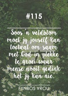 """__[Fynbos Vrou/FB] # 115 """"Soos 'n veldblom. Afrikaanse Quotes, Christian Devotions, Faith Hope Love, Religious Quotes, Positive Thoughts, Beautiful Words, Inspirational Quotes, Motivational, Wise Words"""