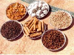 Spice it up Spice Things Up, Dog Food Recipes, Waffles, Spices, Herbs, Breakfast, Rembrandt, School, Morning Coffee