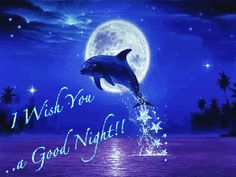 I wish you a good night night animated graphic good night good evening sweet dreams good night greeting good night quote