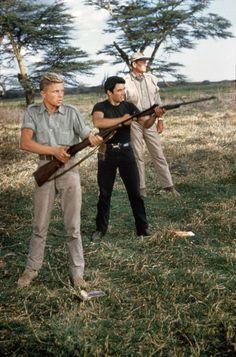 "howardhawkshollywood: "" Hatari (1962) """