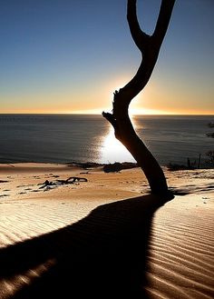 #fraserisland #queensland #australia www.fraserisland.net